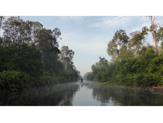 Local  communi)es  like  this  one  in  Riau,  o]en  on  the  edge  of  protected  forest,  as...