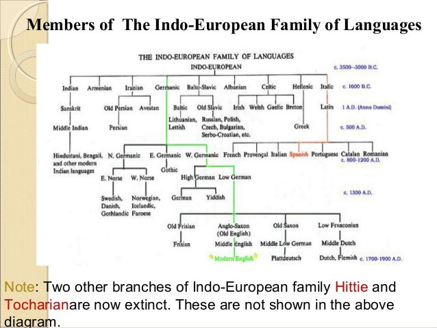 the indo european language family There are two competing hypotheses for the origin of the indo-european language family the conventional view places the homeland in the pontic steppes approximately 6kya.