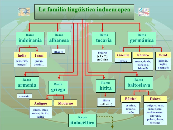La familia lingüística indoeuropea Rama indoirania India sánscrito, bengalí Iraní persa, zendo… Rama albanesa albanés Rama...