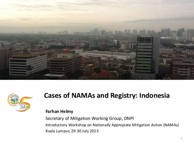 Cases of NAMAs and Registry: Indonesia Farhan Helmy Secretary of Mitigation Working Group, DNPI Introductory Workshop on N...