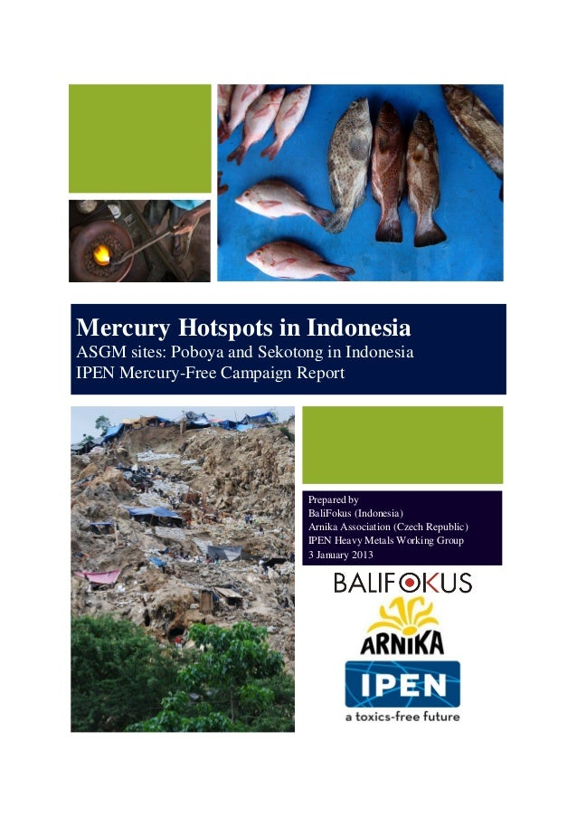 Mercury Hotspots in Indonesia ASGM sites: Poboya and Sekotong in Indonesia IPEN Mercury-Free Campaign Report Prepared by B...