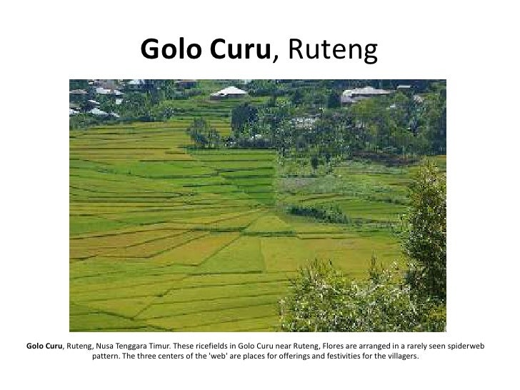 Golo Curu, Ruteng     Golo Curu, Ruteng, Nusa Tenggara Timur. These ricefields in Golo Curu near Ruteng, Flores are arrang...