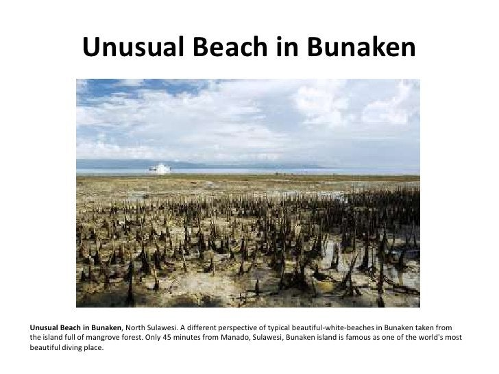 Unusual Beach in Bunaken     Unusual Beach in Bunaken, North Sulawesi. A different perspective of typical beautiful-white-...