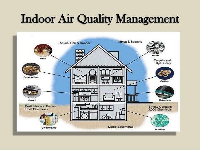 Indoor Air Quality : Indoor air quality