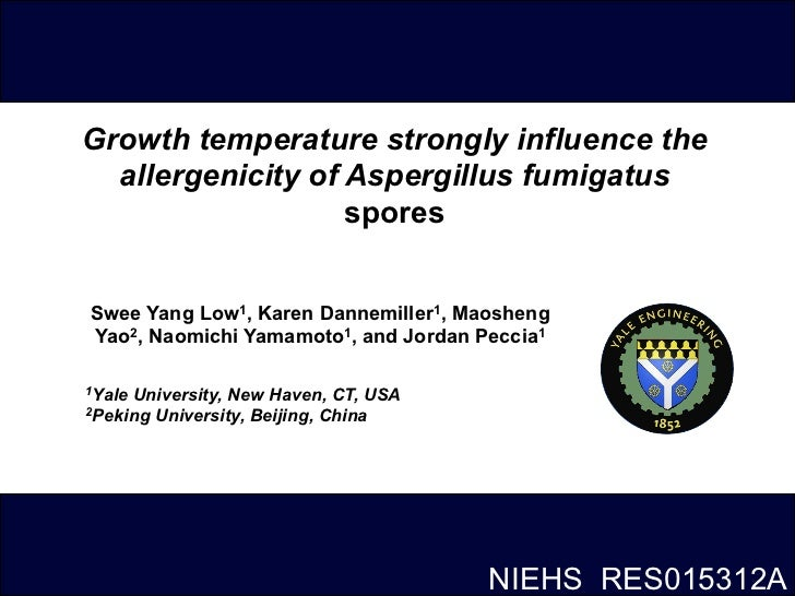 Growth temperature strongly influence the  allergenicity of Aspergillus fumigatus                   sporesSwee Yang Low1, ...