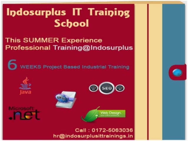 http://indosurplusittrainings.in/seo/
