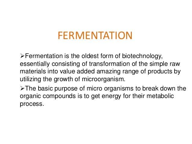 Food Biotechnology- Fermentation