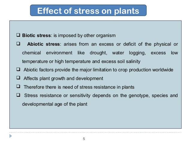 abiotic stres effect on plant by Collectively these features allow clients to quantify plant tolerance and/or vulnerability to a range of induced abiotic stress conditions (eg drought, salinity, nutrition within an experiment, and thus have the potential to objectively quantify the effects of various watering regimes on both individual plants and plant groups.