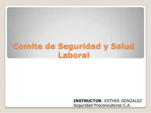 Comite de Seguridad y Salud Laboral  INSTRUCTOR: ESTHER GONZALEZ Seguridad Proconsultores C.A.