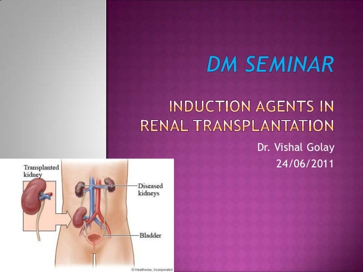 DM SEMINARINDUCTION AGENTS in renal transplantation<br />Dr. Vishal Golay<br />24/06/2011<br />