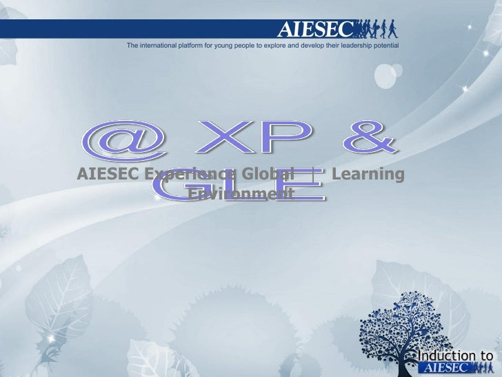 AIESEC Experience Global  |  Learning Environment