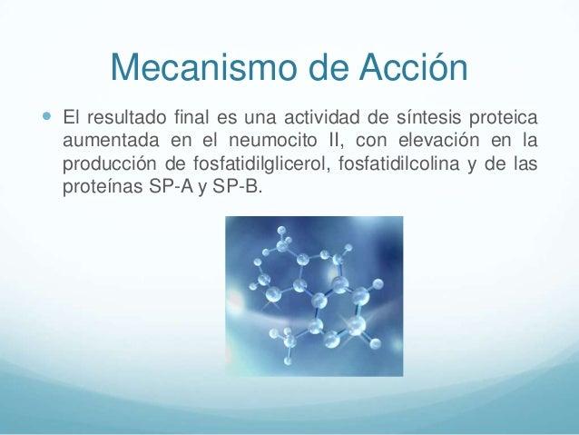 Mecanismo de Acción  El resultado final es una actividad de síntesis proteica aumentada en el neumocito II, con elevación...