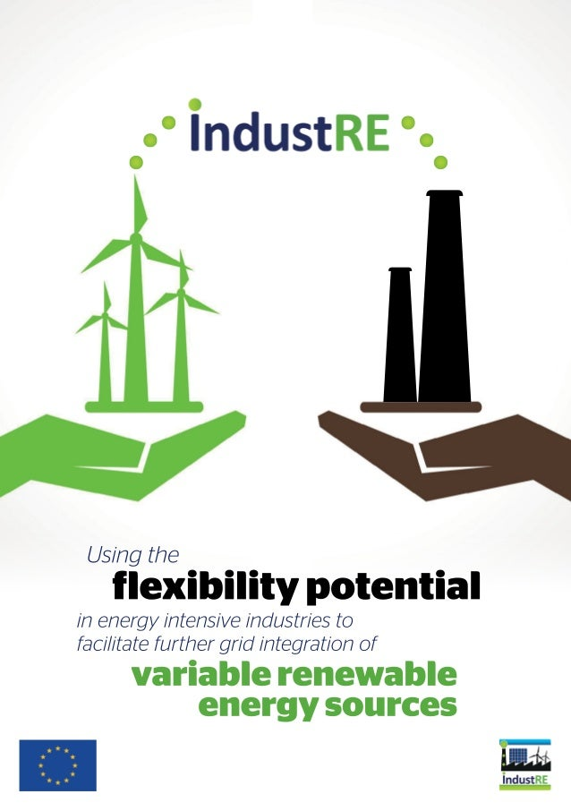 Introduction to Two aims within two timeframes Project Aims The flexibility potential of large industrial users' electrici...