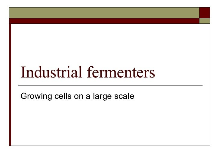 Industrial fermenters Growing cells on a large scale