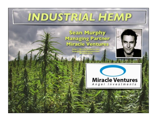 Industrial Hemp a.k.a Cannabis Sativa sp. is not to be confused with Marijuana All Hemp Species = 10% Marijuana 90% are he...