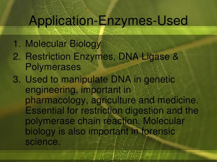 enzymes in industry coursework Application of enzymes in food industry 1 enzymes used in food industry roll no 3 m sc part 1 2.