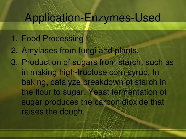 the specificity of brewers and bakers yeast enzymes to different sugars Bioethanol is no different from ethanol, except that, as the name indicates, it is   as baker's yeast because it is most commonly used for rising bread dough.