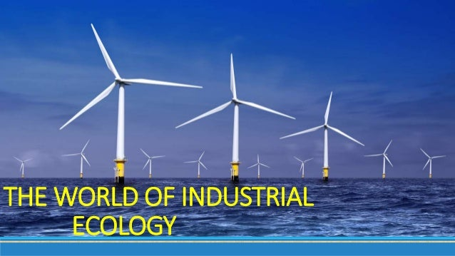 THE WORLD OF INDUSTRIAL ECOLOGY