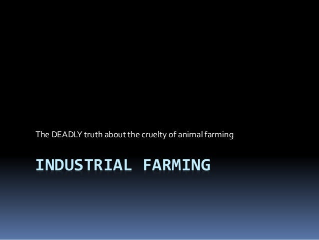 INDUSTRIAL FARMING The DEADLY truth about the cruelty of animal farming