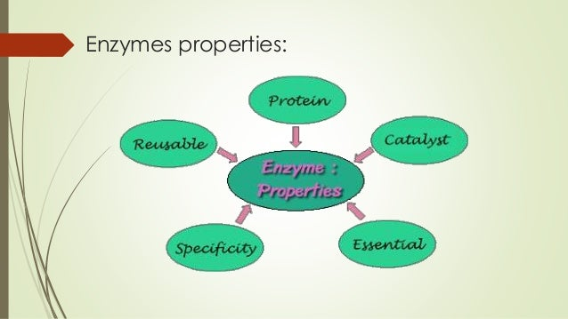 Three Industrially important enzymes