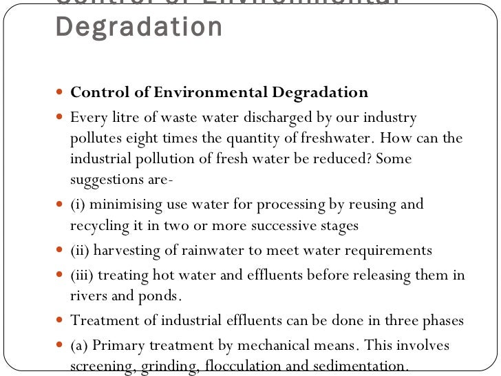 environmental degradation essay environmental ethics essay environmental ethics broadview press essay english essay about environment english speech essay example