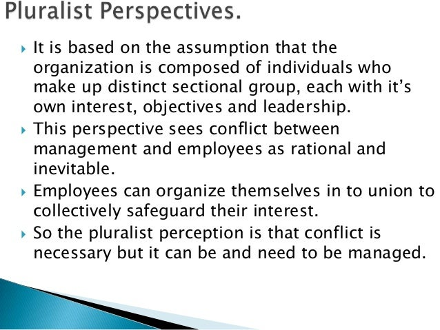    It is based on the assumption that the    organization is composed of individuals who    make up distinct sectional gr...