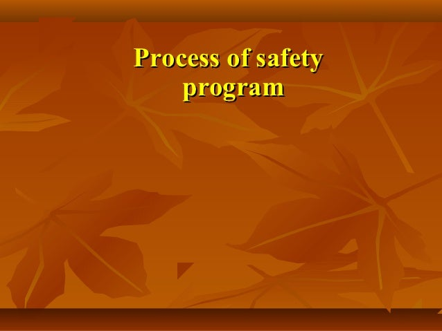 Process of safety    program