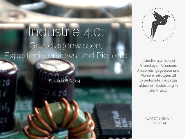 Industrie 4.0: Neben  Grundlagen, Chancen,  Anwendungsgebiete und  Pioniere, erfolgten 28  Experteninterviews zur  aktuell...