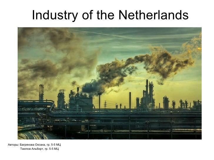 Industry of the Netherlands Авторы: Багрянова Оксана, гр. 5-5 МЦ Таюпов Альберт, гр. 5-5 МЦ