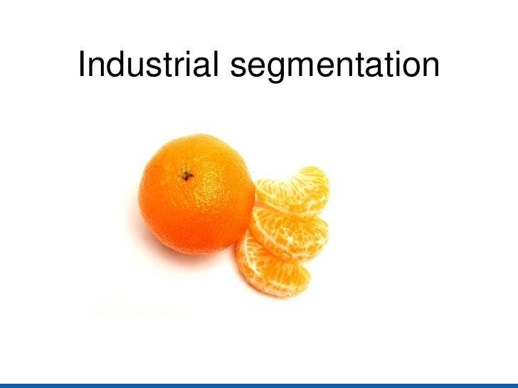 Industrialsegmentation