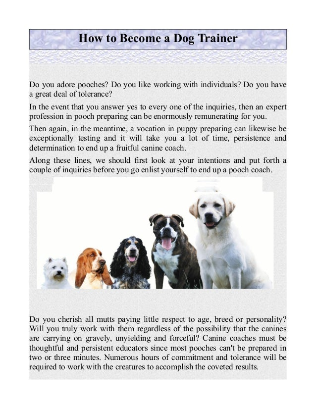 How to Become a Dog Trainer Do you adore pooches? Do you like working with individuals? Do you have a great deal of tolera...