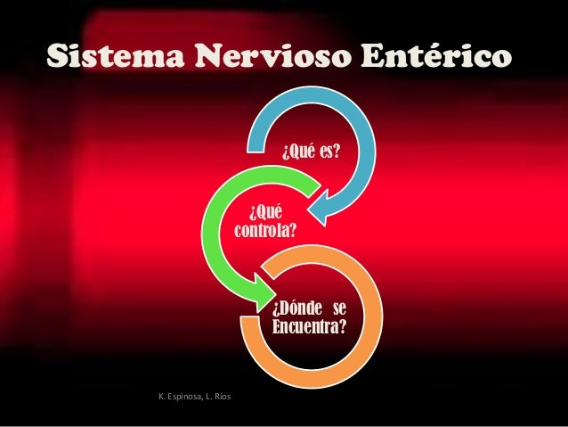Sistema Nervioso Entérico ¿Qué es? ¿Qué controla? ¿Dónde se Encuentra? K. Espinosa, L. Ríos