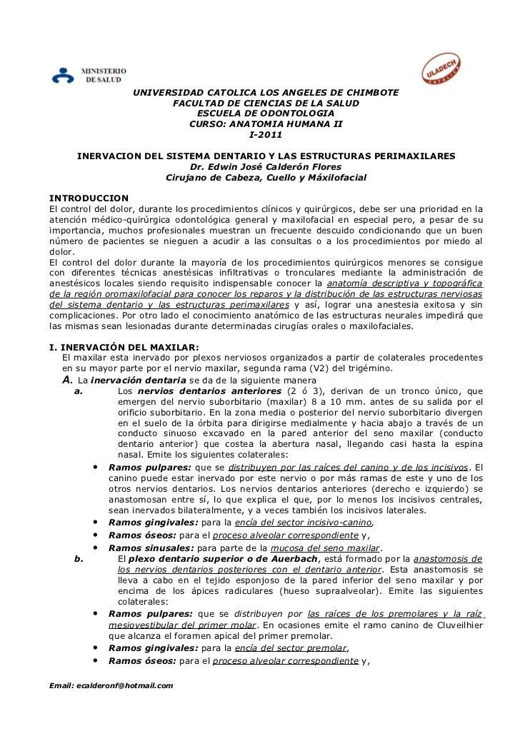 UNIVERSIDAD CATOLICA LOS ANGELES DE CHIMBOTE                         FACULTAD DE CIENCIAS DE LA SALUD                     ...