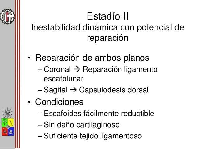 Reparación Ligamento Escafolunar