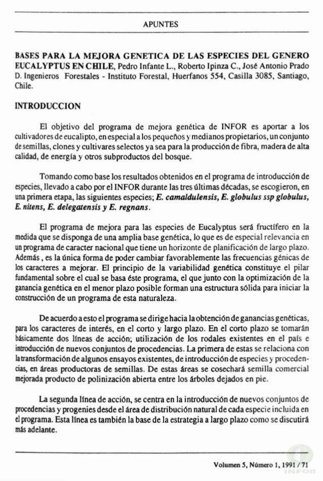 APUNTES BASES PARA LA MEJORA GENETICA DE LAS ESPECIES DEL GENERO EUCALYPTUS EN CmLE, Pedro Infante L., Roberto Ipinza c., ...