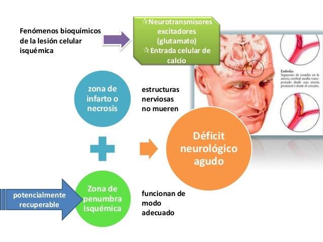 Neurotransmisores Fenómenos bioquímicos           excitadores de la lesión celular            (glutamato) isquémica      ...