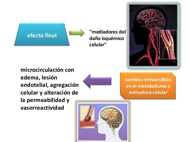 """""""mediadores del  efecto final            daño isquémico                          celular""""microcirculación conedema, lesión..."""