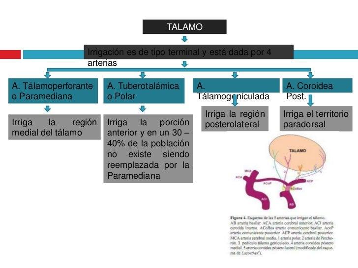 Infarto talamico bilateral caso clinico