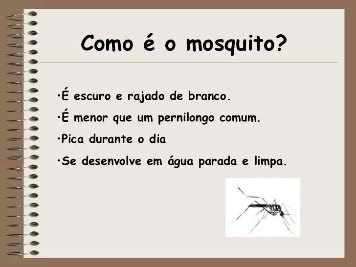 Como é o mosquito? <ul><li>É escuro e rajado de branco.  </li></ul><ul><li>É menor que um pernilongo comum.  </li></ul><ul...