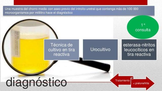 infeccion de vias urinarias pdf