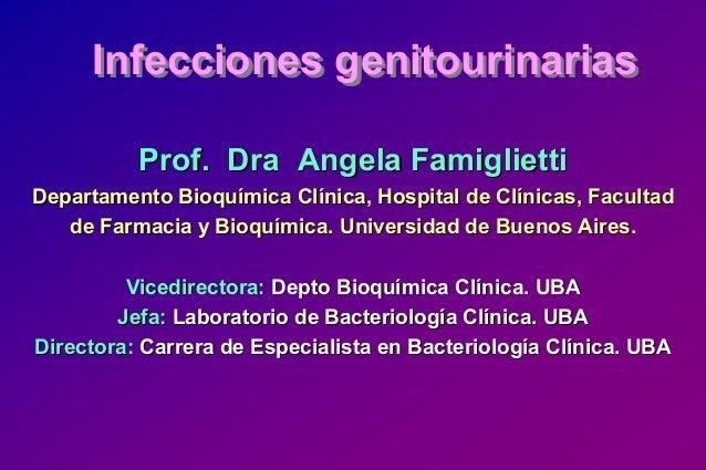 Infecciones genitourinariasInfecciones genitourinarias Prof.Prof. DraDra AngelaAngela FamigliettiFamiglietti Departamento ...
