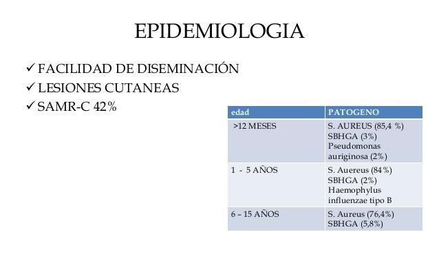 EPIDEMIOLOGIA  FACILIDAD DE DISEMINACIÓN  LESIONES CUTANEAS  SAMR-C 42% edad PATOGENO >12 MESES S. AUREUS (85,4 %) SBHG...