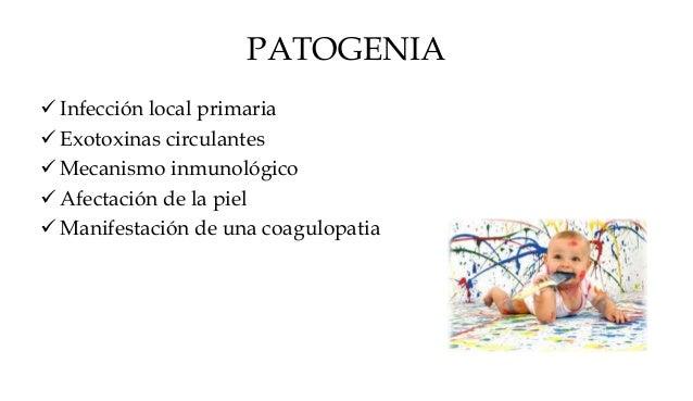 PATOGENIA  Infección local primaria  Exotoxinas circulantes  Mecanismo inmunológico  Afectación de la piel  Manifesta...