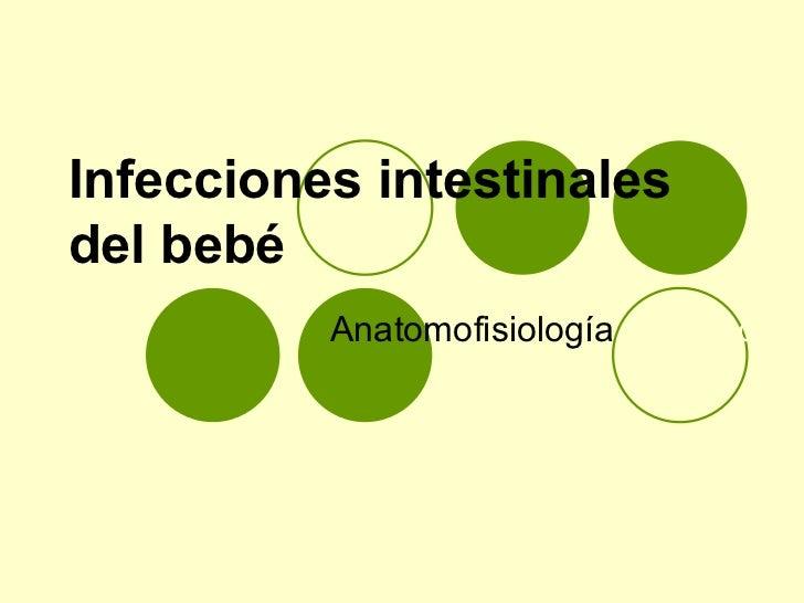 Infecciones intestinales del bebé Anatomofisiología  y cuidados