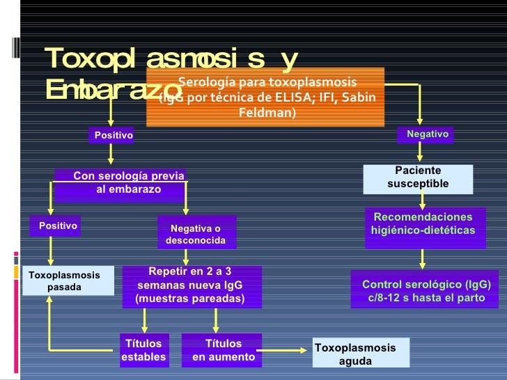 Toxoplasmosis y Embarazo <ul><li>Serología para toxoplasmosis </li></ul><ul><li>(IgG por técnica de ELISA; IFI, Sabin Feld...
