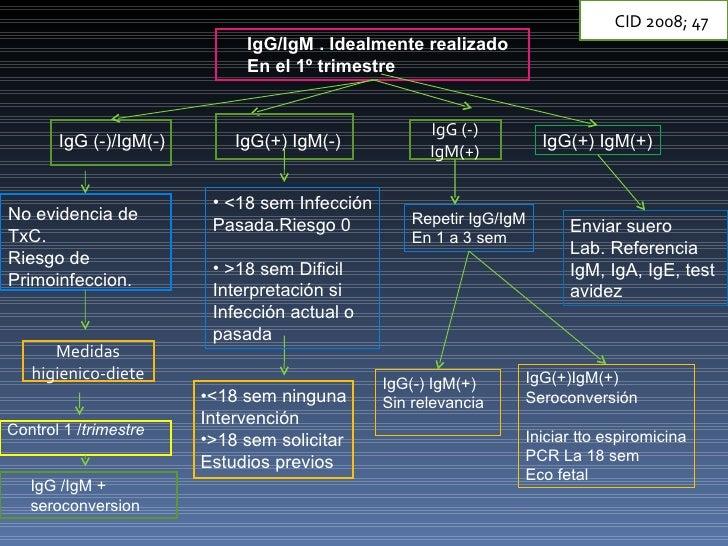 IgG (-) IgM(+) Medidas higienico-diete IgG/IgM . Idealmente realizado En el 1º trimestre IgG (-)/IgM(-) No evidencia de  T...
