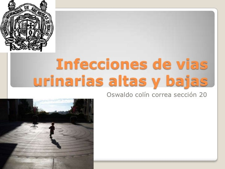Infecciones de vias urinarias altas y bajas<br />Oswaldo colín correa sección 20<br />