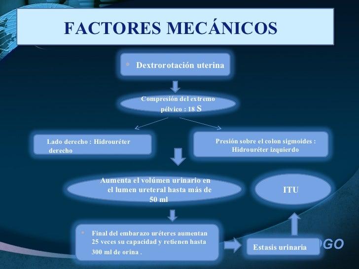 FACTORES MECÁNICOS  Compresión del extremo pélvico : 18  S  <ul><li>Dextrorotación uterina  </li></ul>Lado derecho : Hidro...