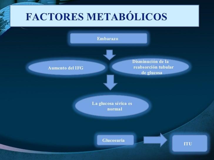 FACTORES METABÓLICOS  Embarazo  Aumento del IFG  La glucosa sérica es normal  Glucosuria  ITU  Disminución de la reabsorci...