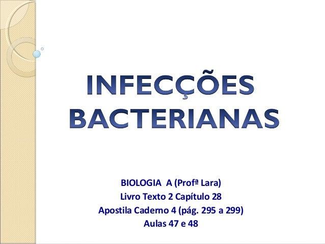 BIOLOGIA A (Profª Lara) Livro Texto 2 Capítulo 28 Apostila Caderno 4 (pág. 295 a 299) Aulas 47 e 48